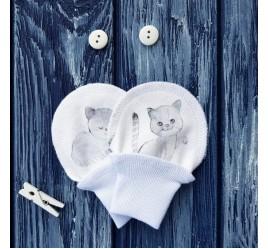 Антицарапки, котята на белом